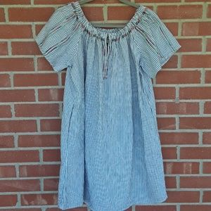 🔥2/$25 plus size XXL Knox Rose seersucker dress